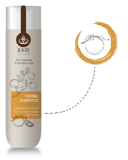 Orange Blossom Shampoo